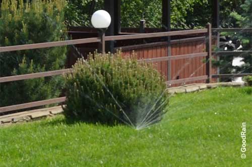 Автополив ротатор полив куста и газона