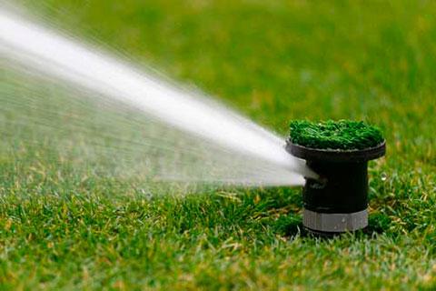 Ротор поливает газон