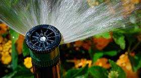 Спринклер для полива